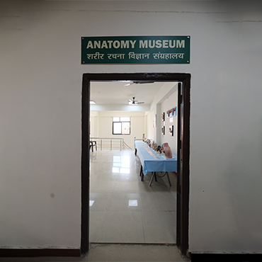 anatomy_museum_2